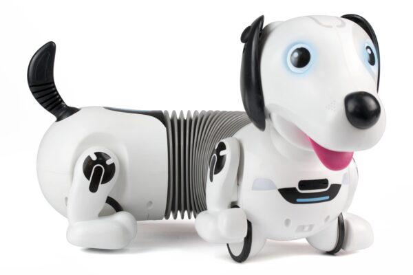 Robo Dackel robothund
